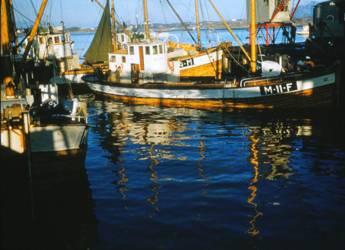 Sildefiske3.jpg
